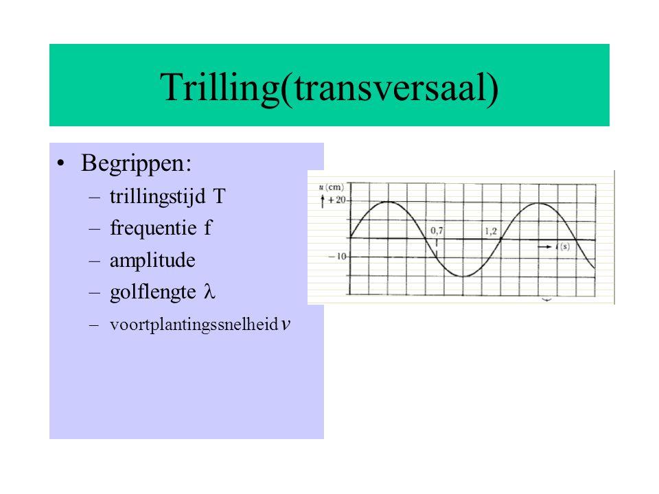 Trilling(transversaal)