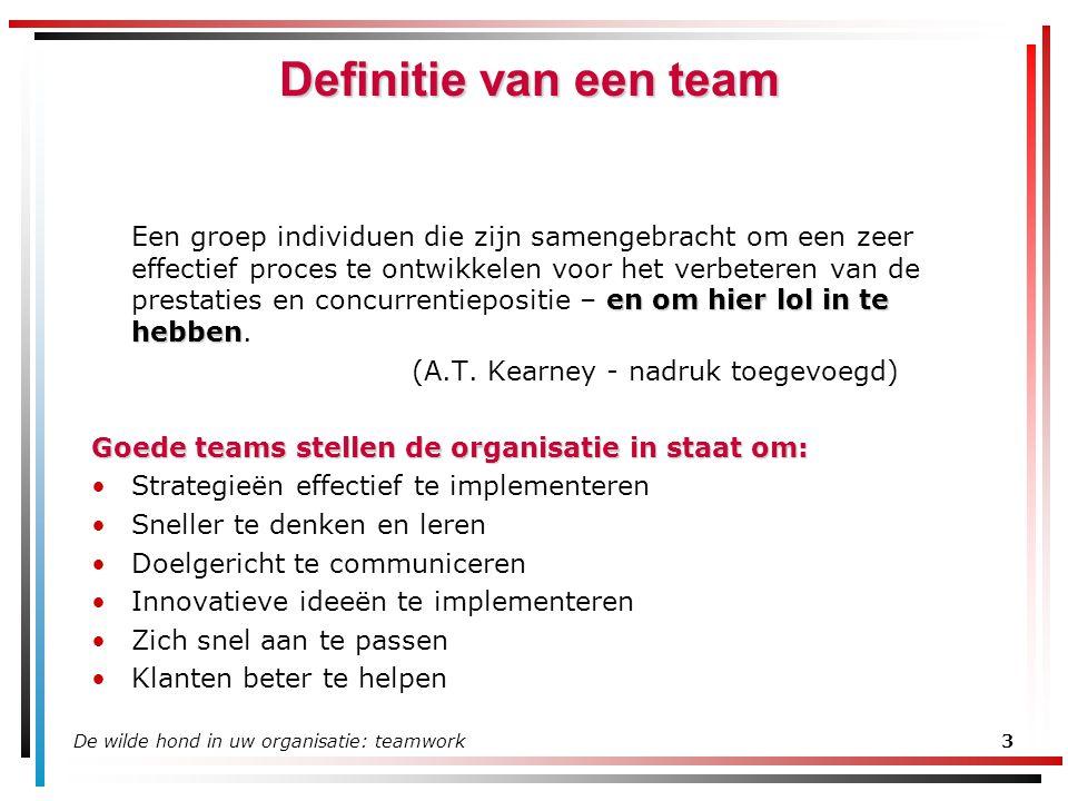 Definitie van een team