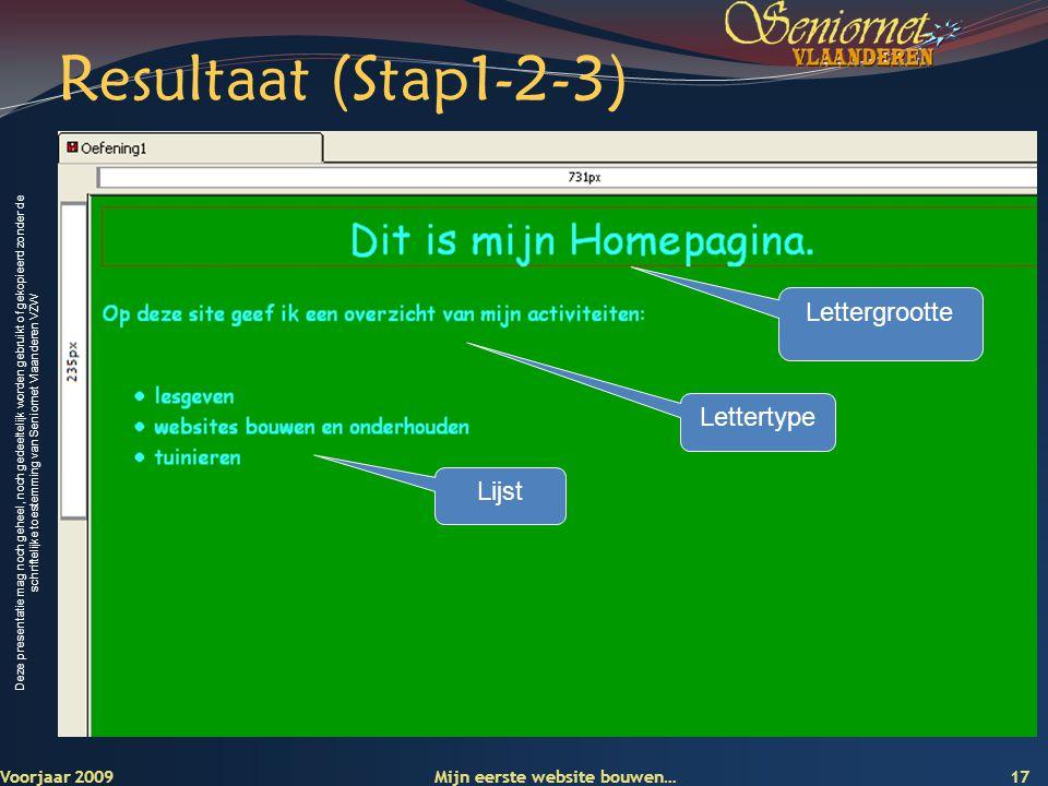 Resultaat (Stap1-2-3) Lettergrootte Lettertype Lijst Voorjaar 2009