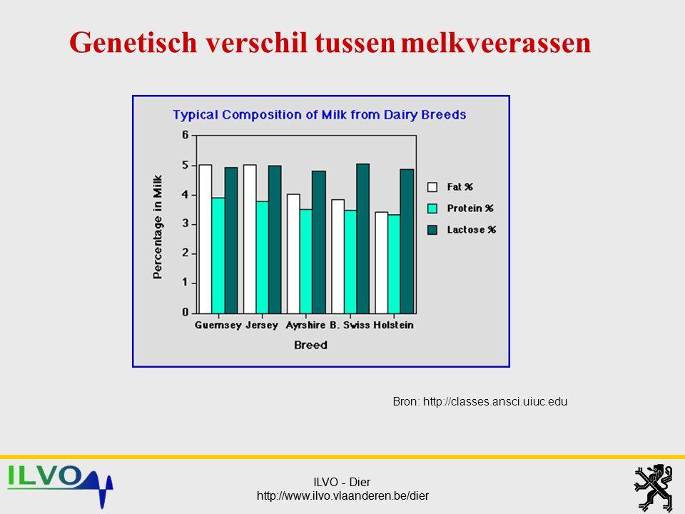 Genetisch verschil tussen melkveerassen