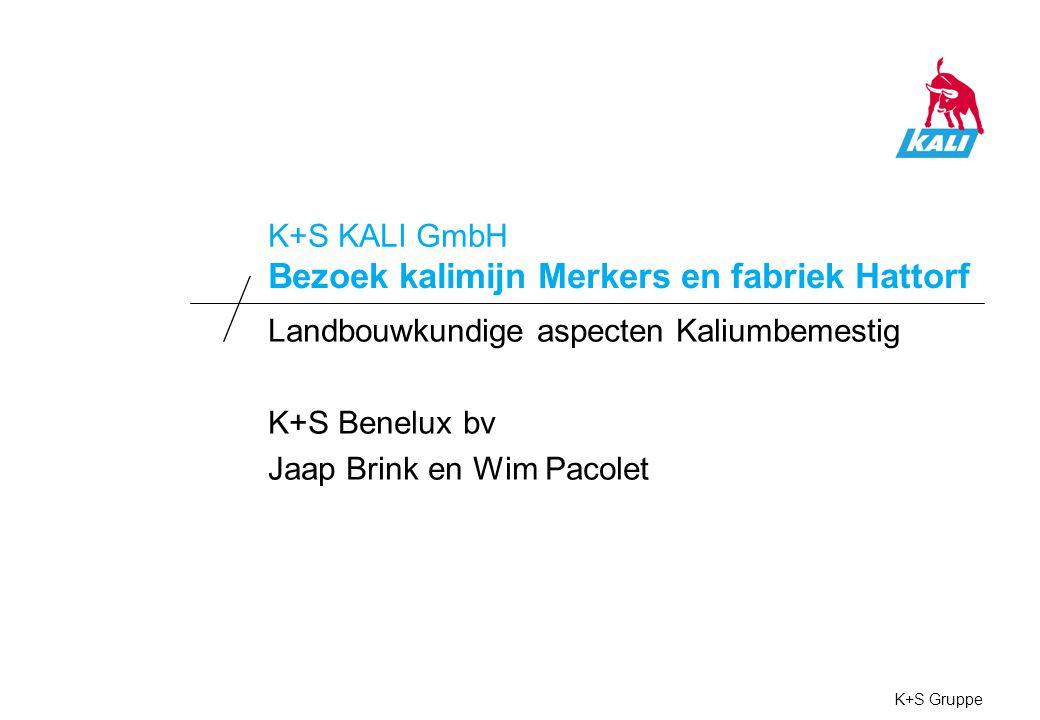 Functie van Kalium K+S Benelux bv / K+S KALI GmbH Kalium: