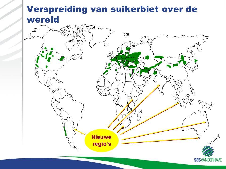 Verspreiding van suikerbiet over de wereld