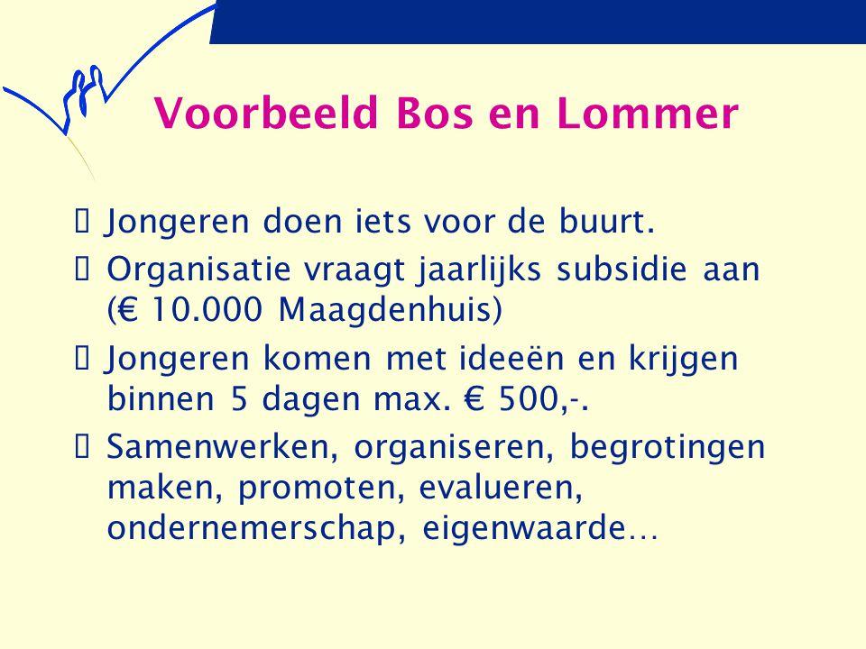 Voorbeeld Bos en Lommer