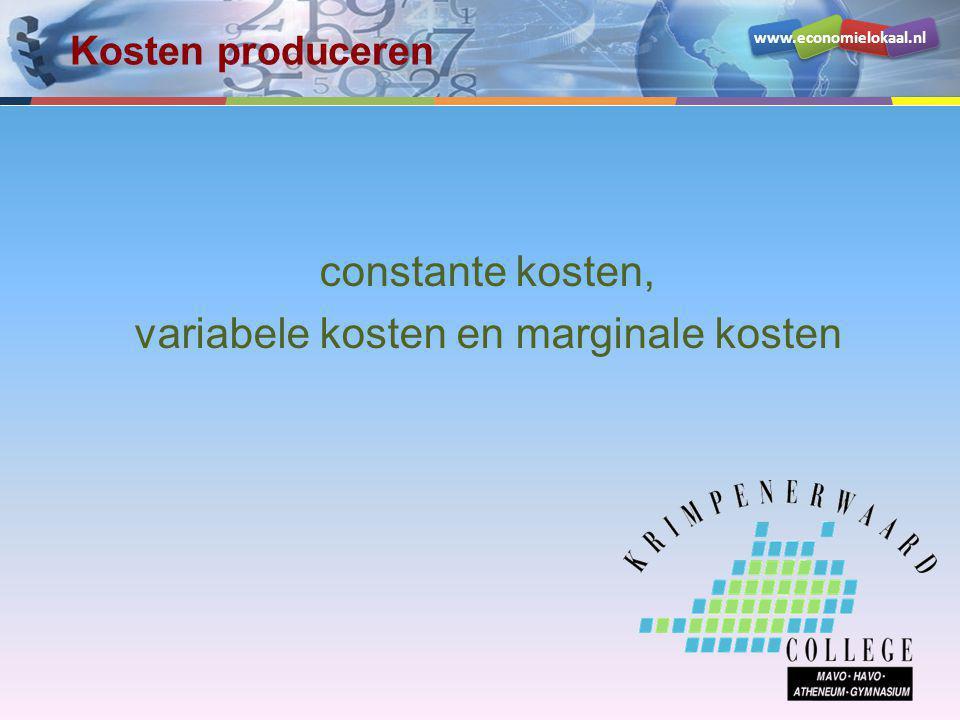 constante kosten, variabele kosten en marginale kosten