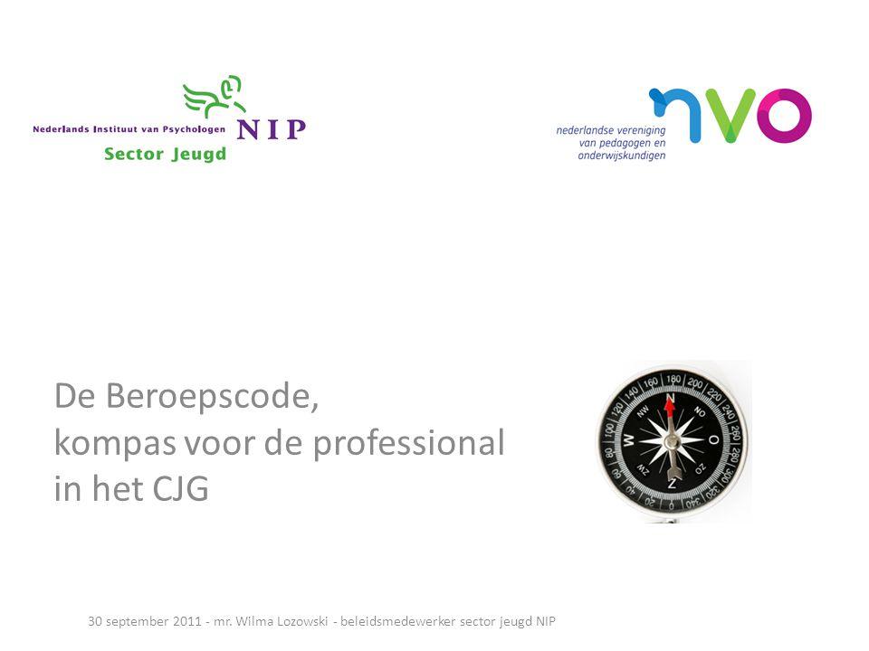 De Beroepscode, kompas voor de professional in het CJG
