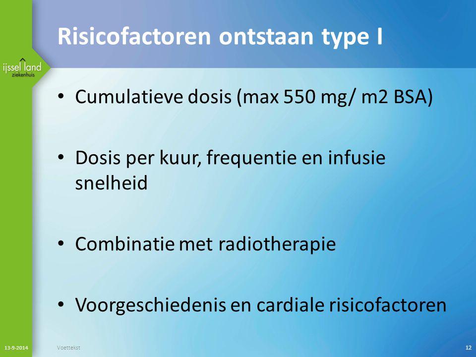 Risicofactoren ontstaan type I