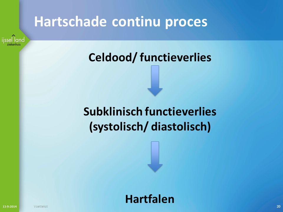 Hartschade continu proces