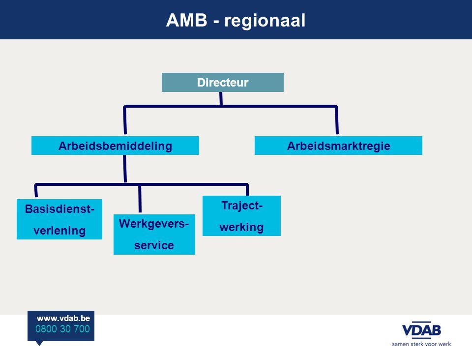 AMB - regionaal Directeur Arbeidsbemiddeling Arbeidsmarktregie