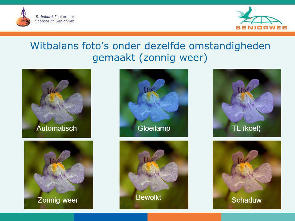 Witbalans foto's onder dezelfde omstandigheden gemaakt (zonnig weer)
