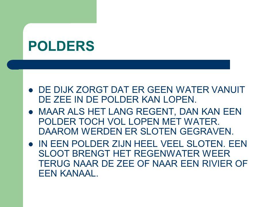 POLDERS DE DIJK ZORGT DAT ER GEEN WATER VANUIT DE ZEE IN DE POLDER KAN LOPEN.