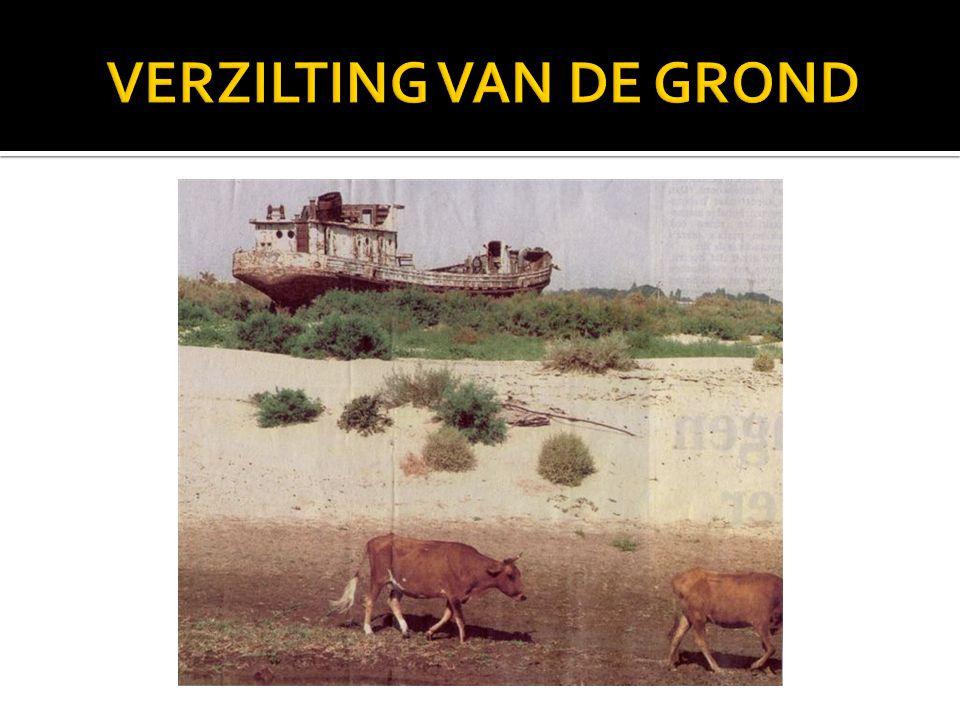 VERZILTING VAN DE GROND