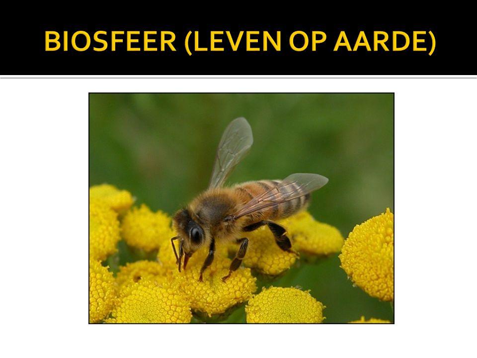 BIOSFEER (LEVEN OP AARDE)