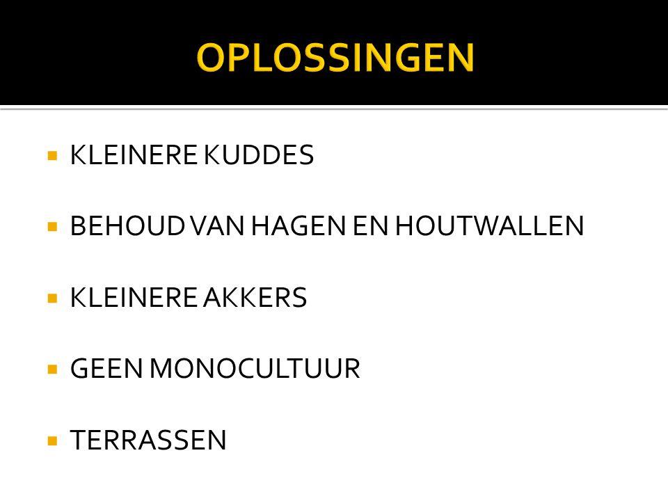 OPLOSSINGEN KLEINERE KUDDES BEHOUD VAN HAGEN EN HOUTWALLEN
