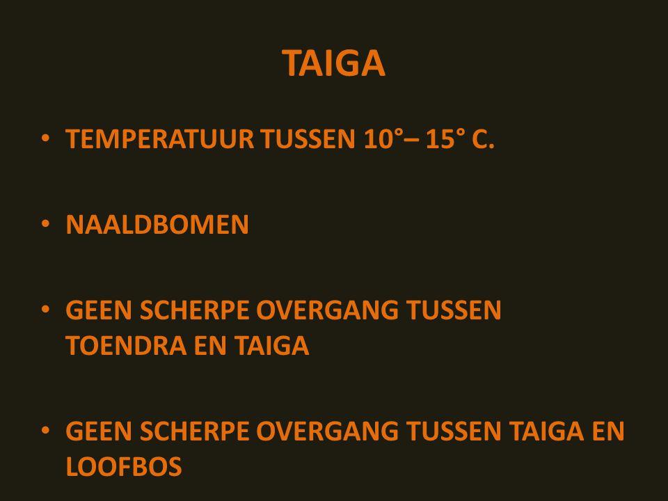TAIGA TEMPERATUUR TUSSEN 10°– 15° C. NAALDBOMEN