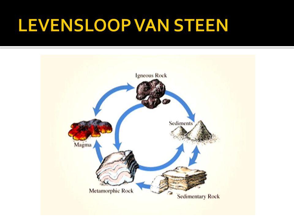 LEVENSLOOP VAN STEEN