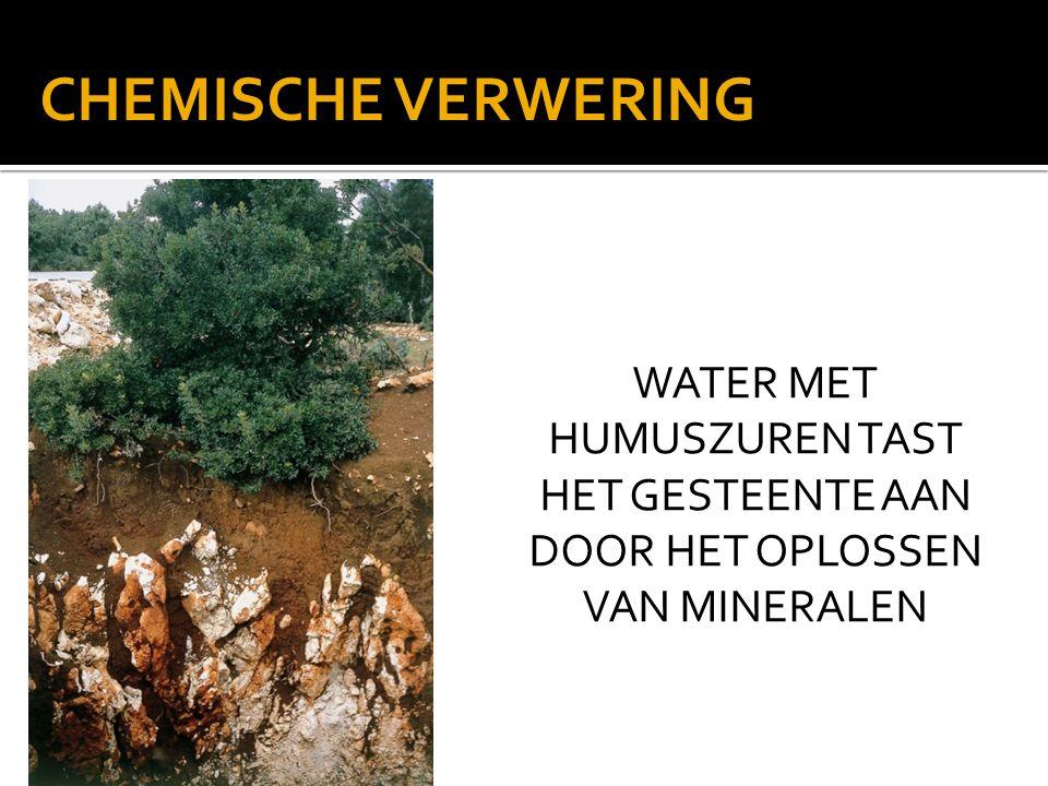CHEMISCHE VERWERING WATER MET HUMUSZUREN TAST HET GESTEENTE AAN DOOR HET OPLOSSEN VAN MINERALEN