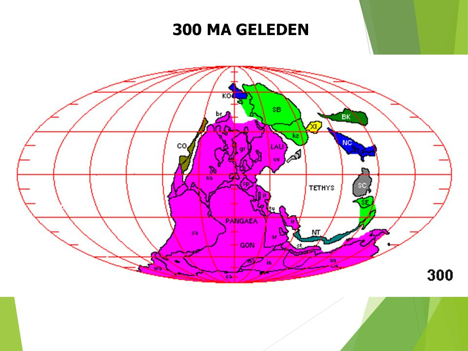 300 MA GELEDEN Paleogeografische situatie 300 Ma geleden (naar S. Dutch). 28
