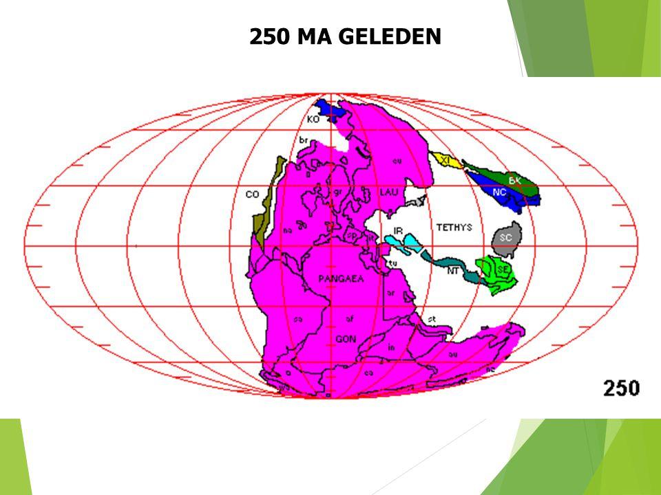 250 MA GELEDEN Paleogeografische situatie 250 Ma geleden (naar S. Dutch). 29