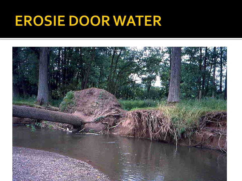 EROSIE DOOR WATER