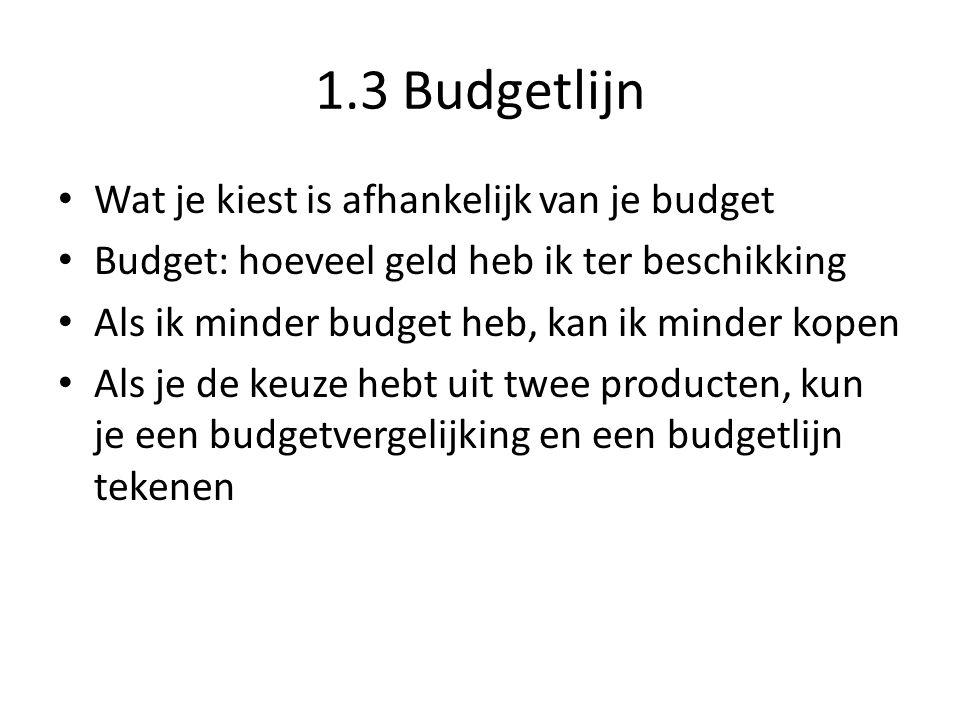 1.3 Budgetlijn Wat je kiest is afhankelijk van je budget