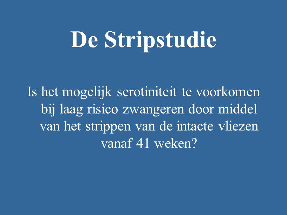 De Stripstudie
