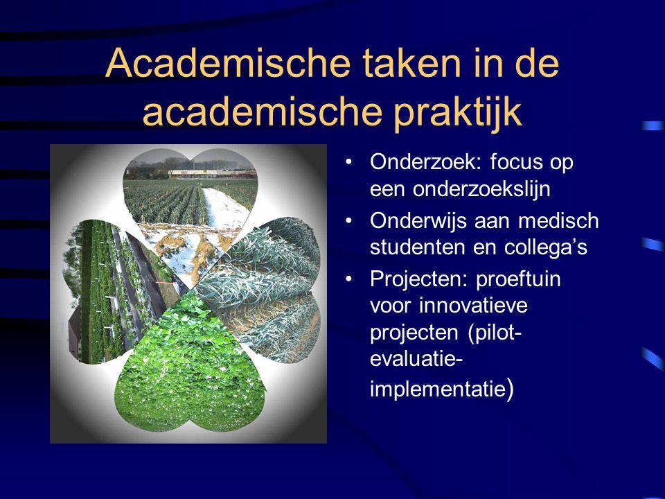 Academische taken in de academische praktijk