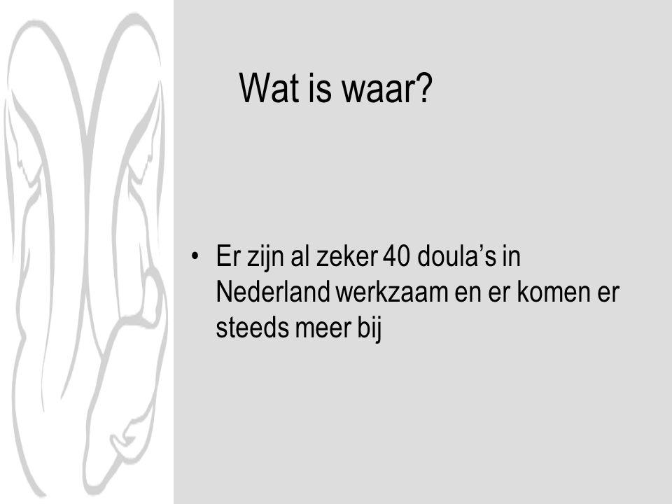 Wat is waar Er zijn al zeker 40 doula's in Nederland werkzaam en er komen er steeds meer bij