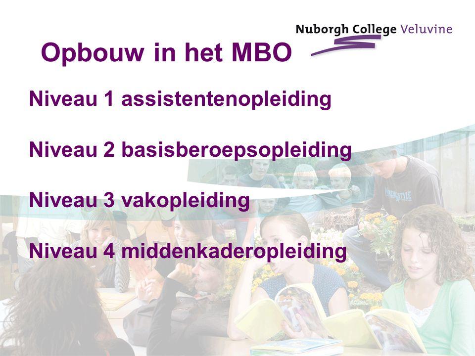 Opbouw in het MBO Niveau 1 assistentenopleiding