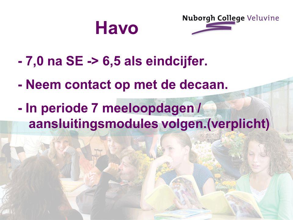 Havo - 7,0 na SE -> 6,5 als eindcijfer.