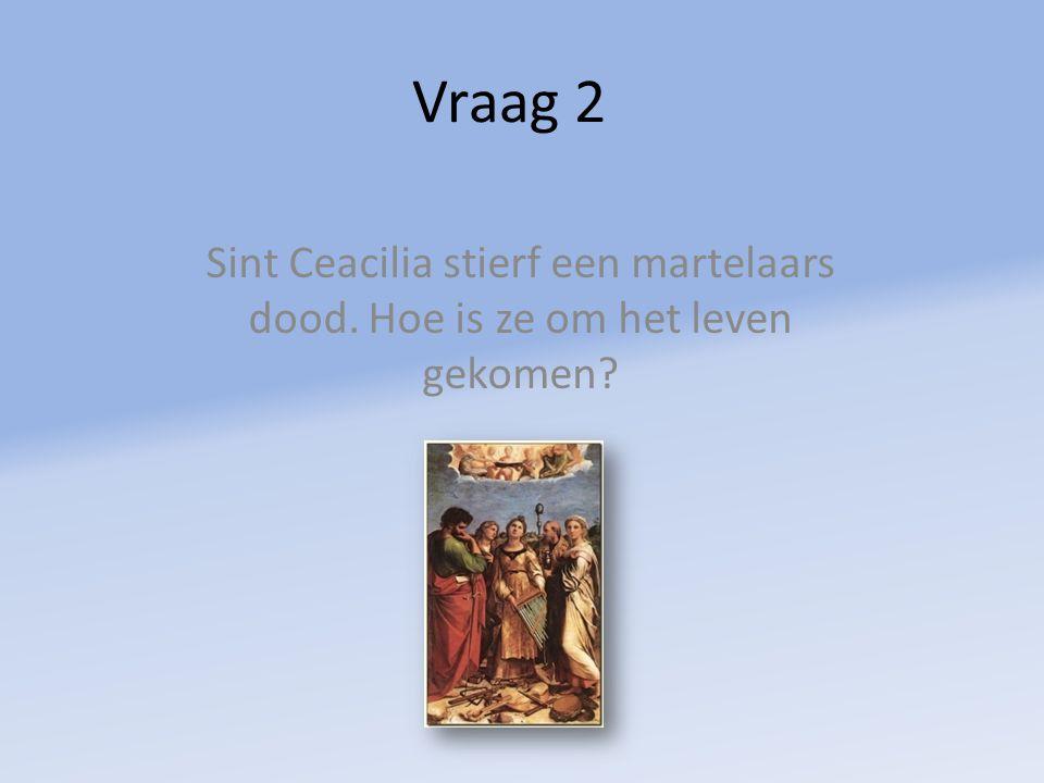 Vraag 2 Sint Ceacilia stierf een martelaars dood. Hoe is ze om het leven gekomen