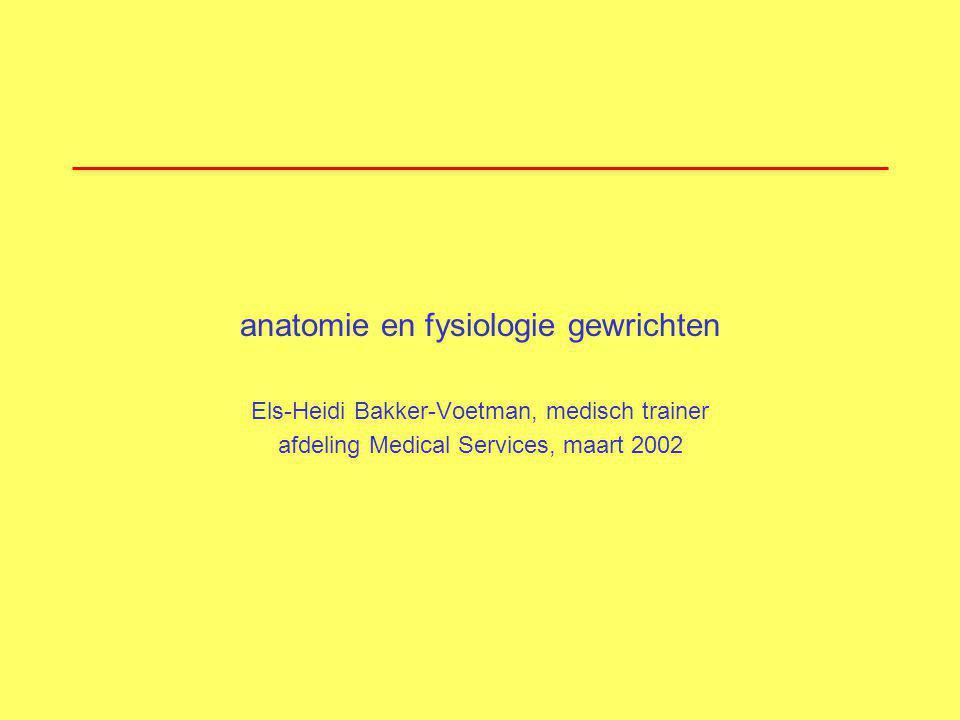 anatomie en fysiologie gewrichten