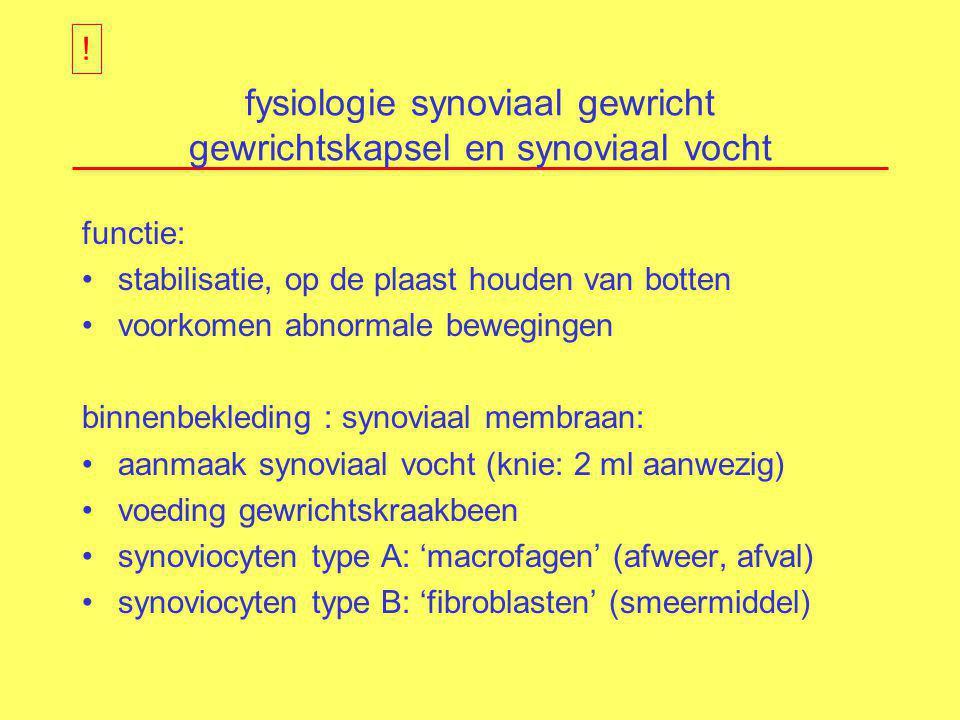 fysiologie synoviaal gewricht gewrichtskapsel en synoviaal vocht
