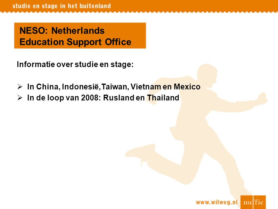 NESO: Netherlands Education Support Office