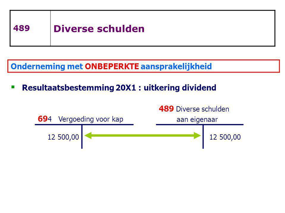 Diverse schulden 489 Onderneming met ONBEPERKTE aansprakelijkheid