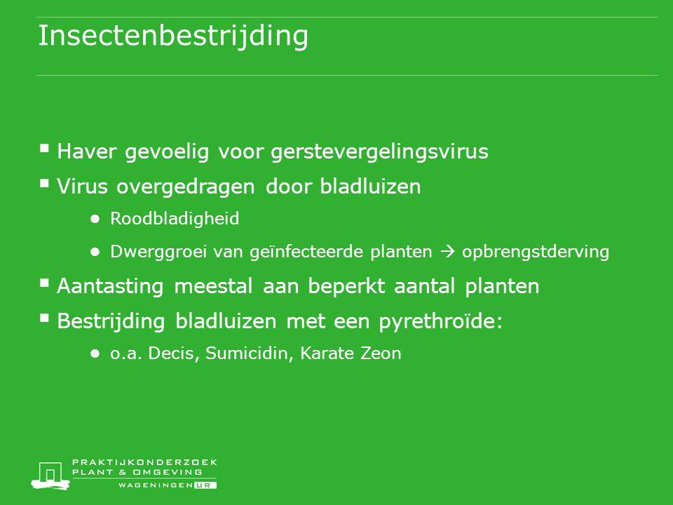 Insectenbestrijding Haver gevoelig voor gerstevergelingsvirus