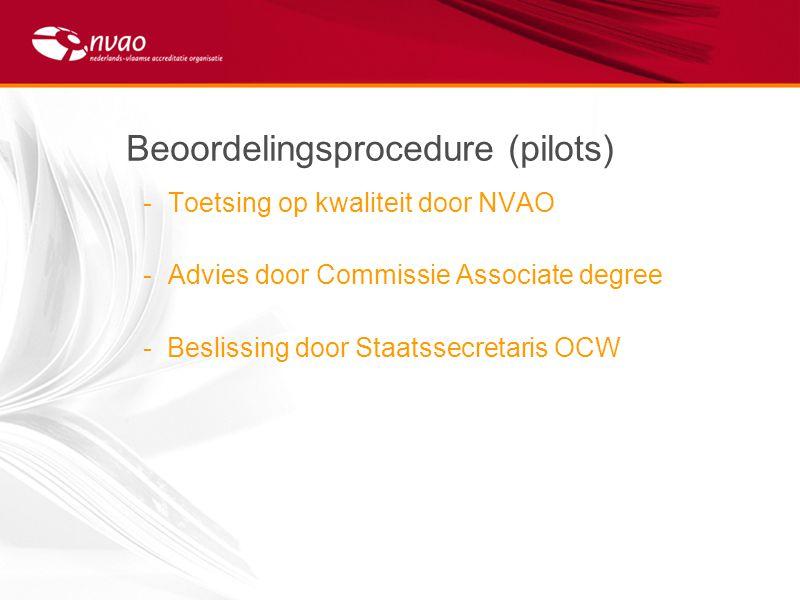 Beoordelingsprocedure (pilots)