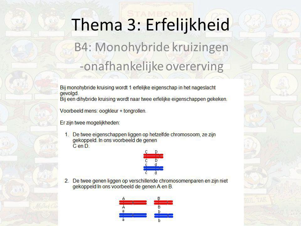 B4: Monohybride kruizingen -onafhankelijke overerving