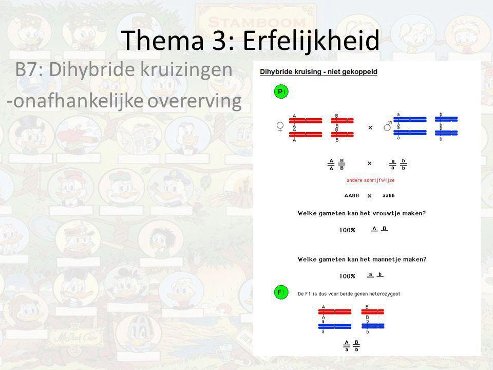 B7: Dihybride kruizingen -onafhankelijke overerving