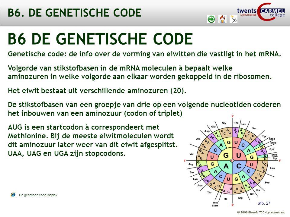 B6 DE GENETISCHE CODE B6. DE GENETISCHE CODE