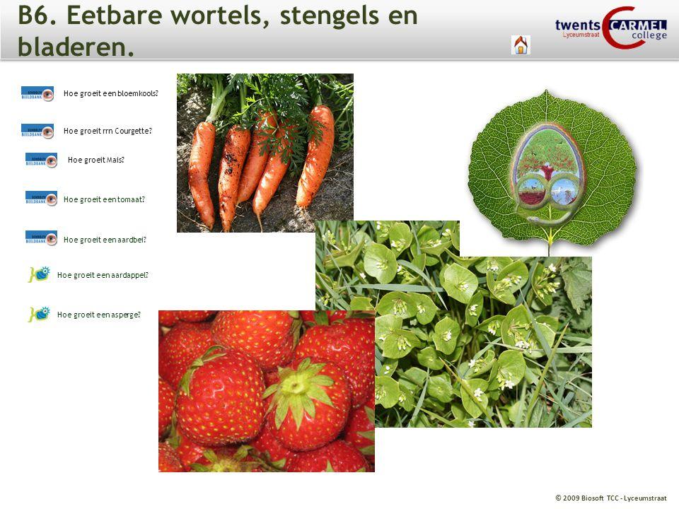 B6. Eetbare wortels, stengels en bladeren.