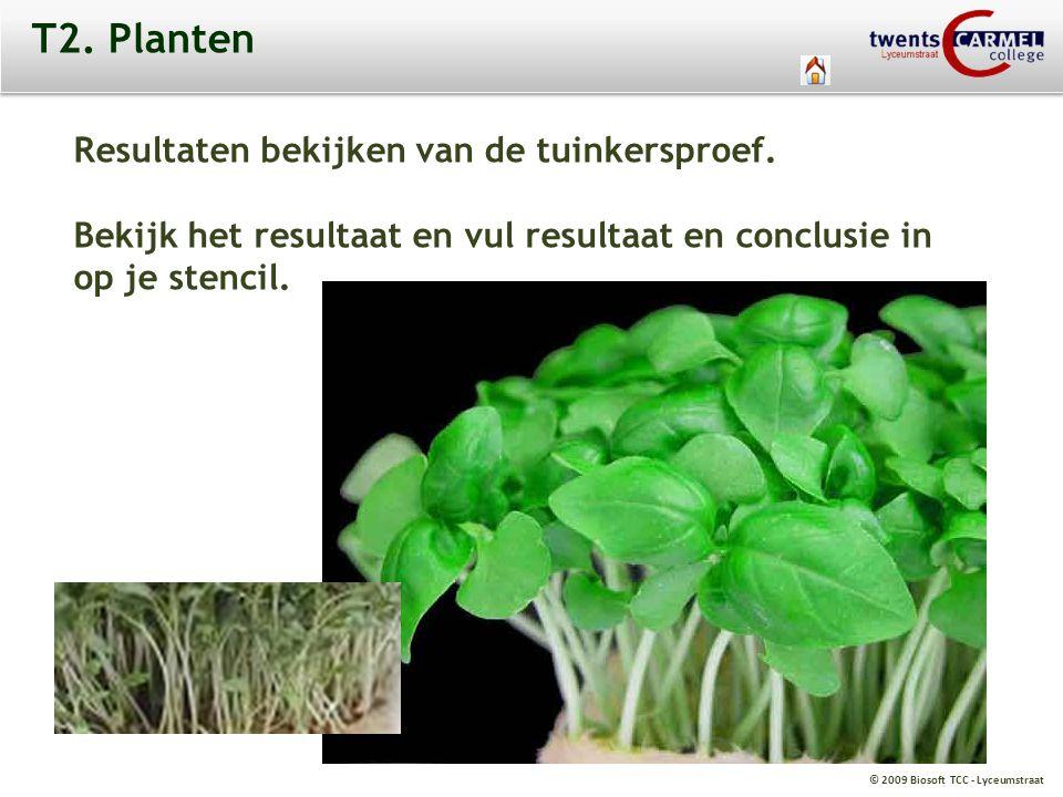T2. Planten Resultaten bekijken van de tuinkersproef.