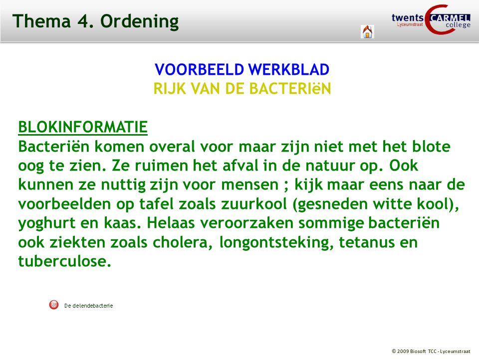 Thema 4. Ordening VOORBEELD WERKBLAD RIJK VAN DE BACTERIëN