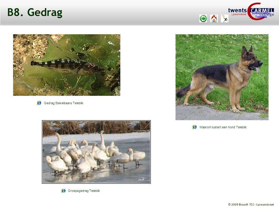 B8. Gedrag http://web.teleblik.kennisnet.nl/tsr/player/vo/fid/1195669