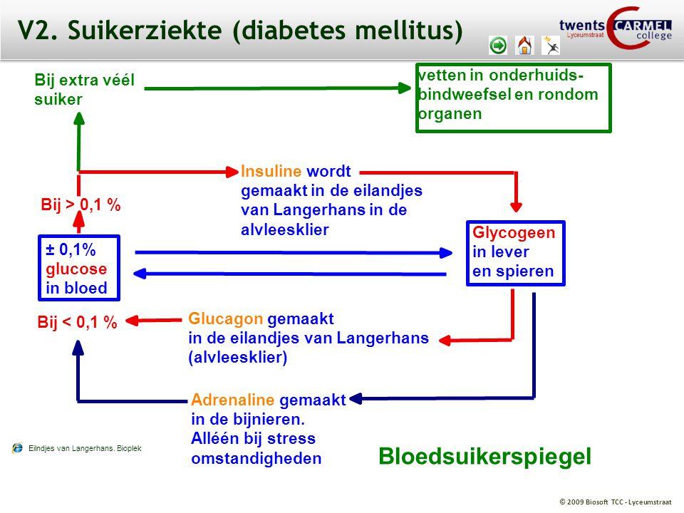 V2. Suikerziekte (diabetes mellitus)