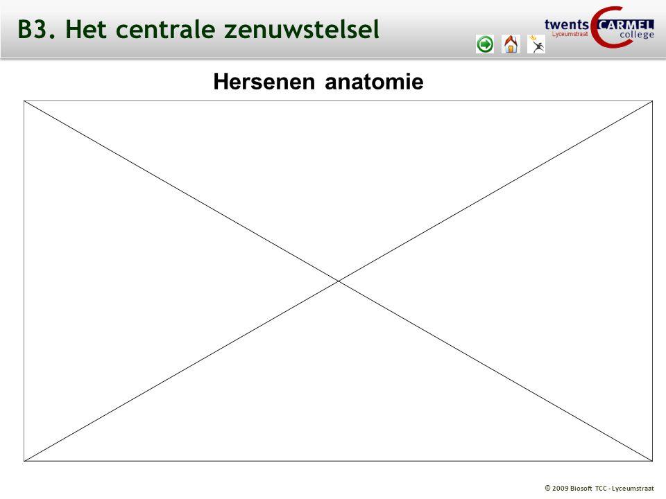 B3. Het centrale zenuwstelsel