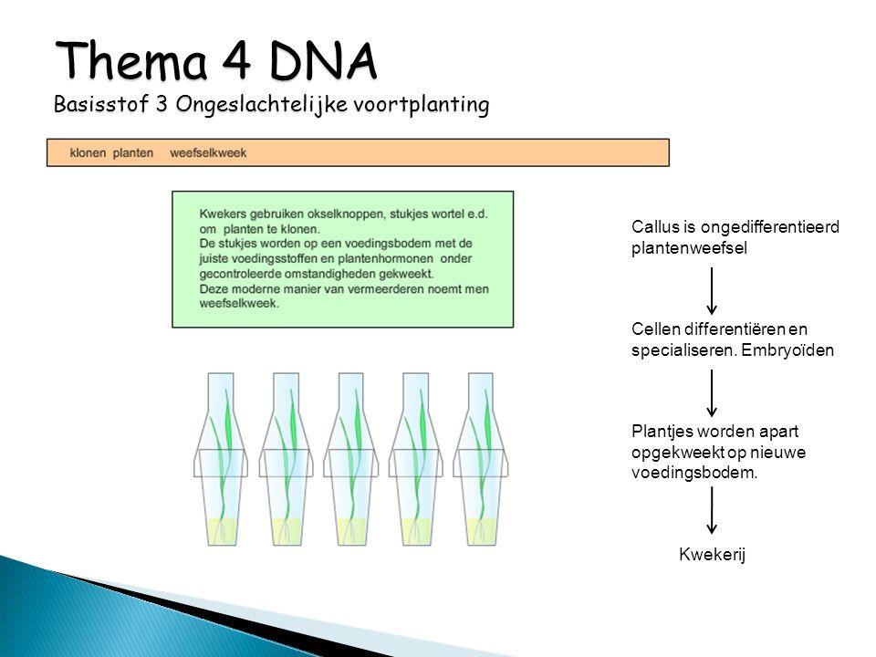 Thema 4 DNA Basisstof 3 Ongeslachtelijke voortplanting