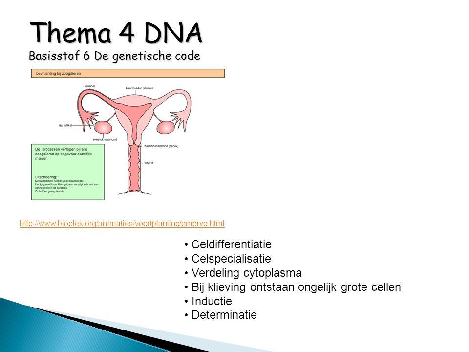 Thema 4 DNA Basisstof 6 De genetische code