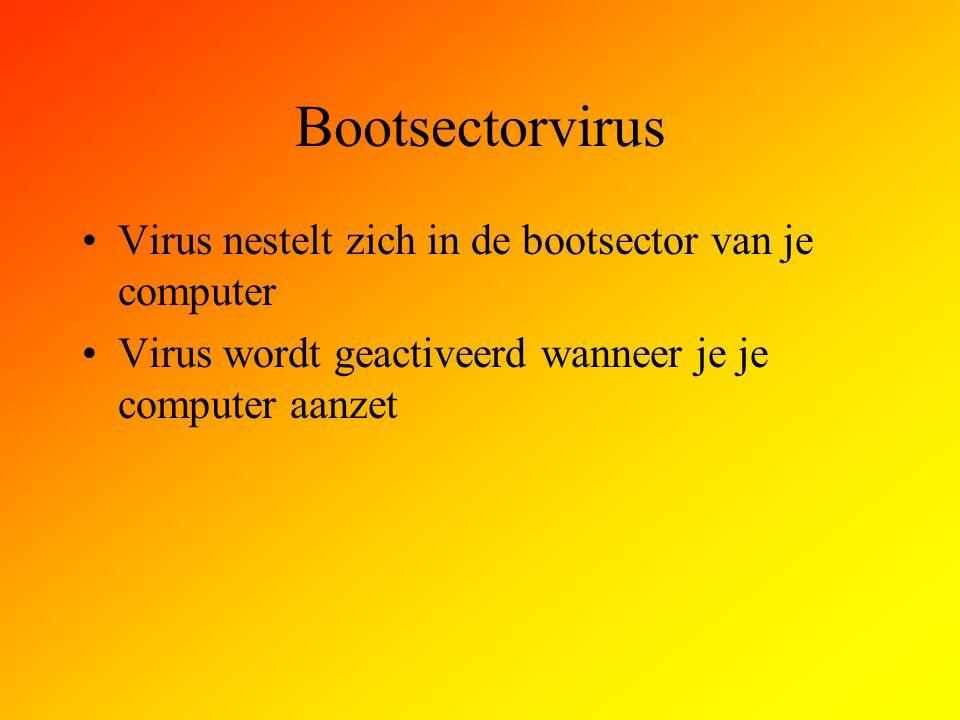 Bootsectorvirus Virus nestelt zich in de bootsector van je computer