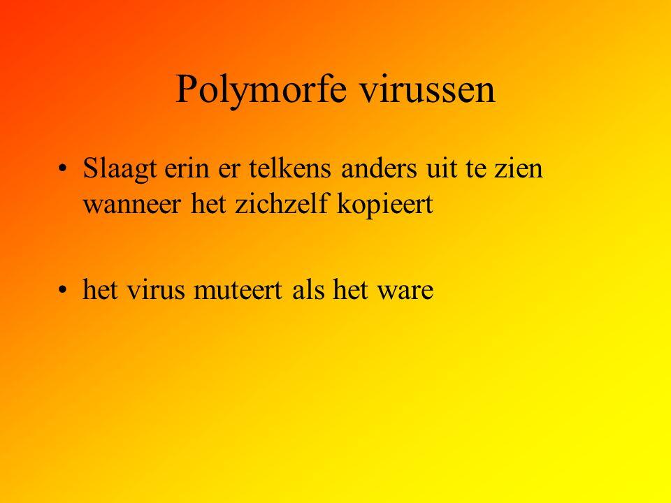 Polymorfe virussen Slaagt erin er telkens anders uit te zien wanneer het zichzelf kopieert.