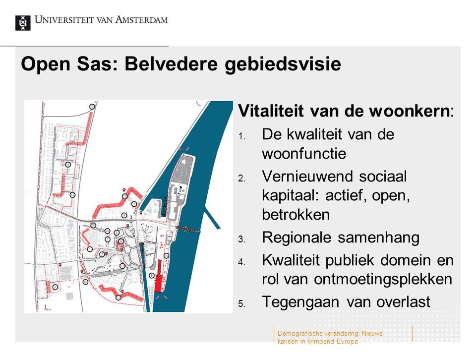 Open Sas: Belvedere gebiedsvisie